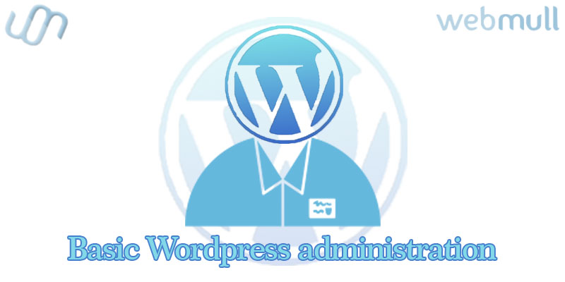 Basic WordPress Administration for website