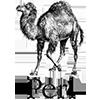 Webmull company use Perl technology for website development in vadodara gujarat india
