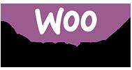 Webmull company use Woo Commerce wordpress extension for website development in vadodara gujarat india